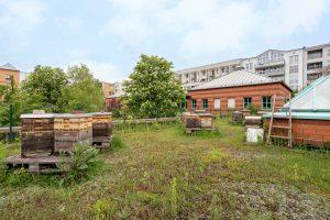Inakindergarten, Raumfotos, Kita Lützowstrasse, Dachterrasse mit Bienenstöcken